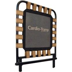 pilates cardio rebounder